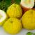 めざましテレビ紹介!夏に食べたいオススメのレモンフードとは?